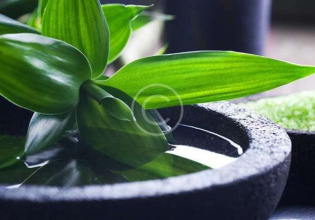 Aromatherapie Olie Massage